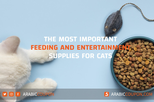 Most Important cats feeding, grooming and entertainment supplies for novices and working parent